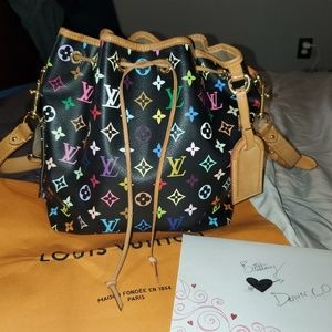 Louis Vuitton multicolored petit noe